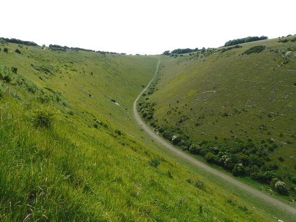 West Sussex Local Geological Sites; Devil's Dyke