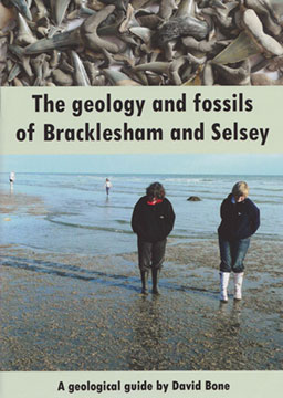 The geology and fossils of Bracklesham and Selsey
